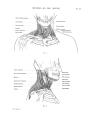 Richer - Anatomie artistique, 2 p. 54.png