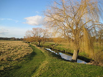 Richmond Park - Beverley Brook in the park