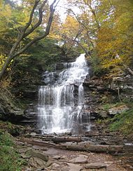 The image on the left is the first of two photographs of the same falls, and shows the cascading falls in autumn. The water flows over layers of rock and is surrounded by deciduous trees with yellow, brown and orange leaves.