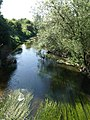 River Avon near Chippenham - geograph.org.uk - 1337210.jpg