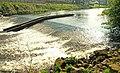River Bann, Seapatrick - geograph.org.uk - 1255245.jpg