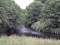 River Forth - geograph.org.uk - 199599.jpg