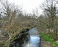 River Goyt - geograph.org.uk - 1207845.jpg