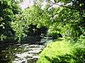 River Granta - Shelford recreation ground - geograph.org.uk - 18061.jpg
