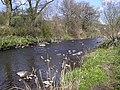 River Irwell - geograph.org.uk - 1247797.jpg