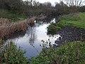 River Soar from Wanlip Meadows 1.jpg