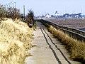 Riverside Footpath - geograph.org.uk - 723251.jpg