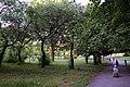 Rivne, Rivnens'ka oblast, Ukraine - panoramio (34).jpg