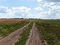 Road - panoramio (157).jpg