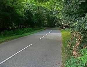 English: Road through Spring Wood Near Staunto...
