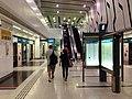 Rochor-mrt-station-platform.jpg