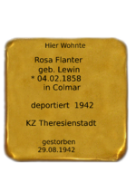Rosa Flanter