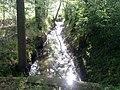 Rothenbach im Juli.jpg