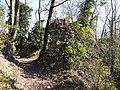 Ruines @ Poype de Ternier @ Parcours d'Orientation Patrimoine du Hameau de Ternier @ Saint-Julien-en-Genevois (51001383620).jpg