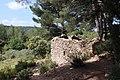 Ruines Ste Victoire.jpg