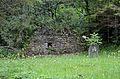 Ruins in Hinterberg, Fladnitz.jpg