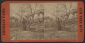 Rustic rest, Central Park, from Robert N. Dennis collection of stereoscopic views.png