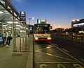 Ruzyně, Terminál 1, noční autobus 510 (01).jpg