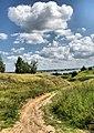 Rybnovsky District, Ryazan Oblast, Russia - panoramio (61).jpg