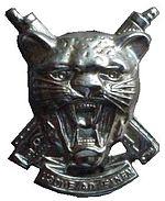 SWATF Regiment Erongo beret badge