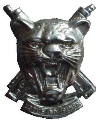 912 Battalion (SWATF) - Image: SWATF Regiment Erongo beret badge