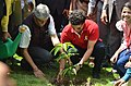 Sachin tendulkar planting tree 02.jpg