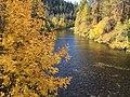Sacramento River in the Autumn (38828599432).jpg
