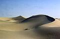 Sahara El Golea 1985..jpg