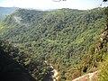 Salto Apucaraninha - panoramio - Alex BATISTA COELHO (4).jpg