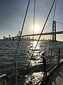 San Francisco - San Francisco–Oakland Bay Bridge - 20171008174150.jpg