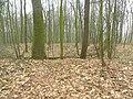 Sanctuary Wood, mijnkrater met bunker (Ieper-Zillebeke) - 256532 - onroerenderfgoed.jpg