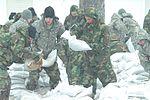 Sandbags in North Dakota DVIDS160015.jpg