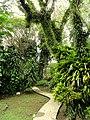 Sankyo Garden - DSC01280.JPG