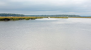 Sapelo River - The Sapelo River in McIntosh County