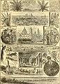 Scenes in Mexico c. 1899.jpg