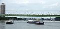 Schiffsstau auf dem Rhein bei Köln 2013-08-20-01.JPG