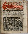 Schildtberger Ein wunderbarliche unnd kurtzweilige History 1.jpg