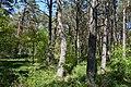 Schleswig-Holstein, Bark, Naturschutzgebiet 30 NIK 4194.JPG