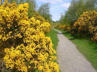 nature reserve in Aberdeen, Scotland