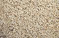Sesame seeds2.jpg