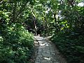 Sett near Ufugui of Sefa-Utaki.JPG