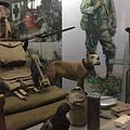 Sgt. Stubby and Cher Ami on display at the NMAH.jpg