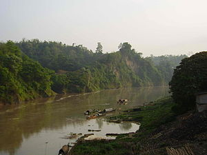 Sangu Matamuhari - Forest by the river sangu