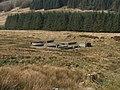 Sheep Fold at Bord a Dubh. - geograph.org.uk - 383633.jpg