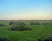 La pianura siberiana occidentale vicino a Novosibirsk.