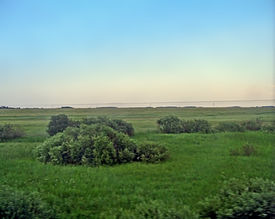 The Siberian plain seen from the Trans-Siberian railway outside Tatarskaya.