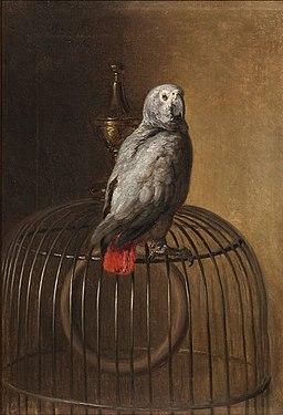 Siegwald Dahl - Papagei (1871)