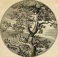 Silenus Alcibiadis, sive, Proteus - vitae humanae ideam, emblemate trifariàm variato, oculis subijciens (1618) (14747855782).jpg
