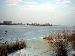 Sirvenos ezeras.JPG