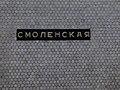 Smolenskaya - Filyovskaya line (Смоленская - Филёвская линия) (5099265671).jpg